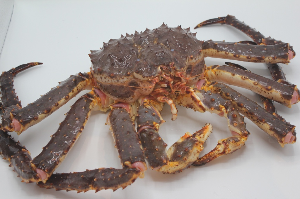 A King Crab (Red) 5 - 6.9 lb /pcs *** $41 for per lbs price ***
