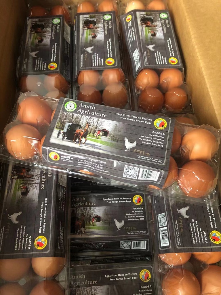 Amish Agriculture Organic (Grade A )Egg 12/pack