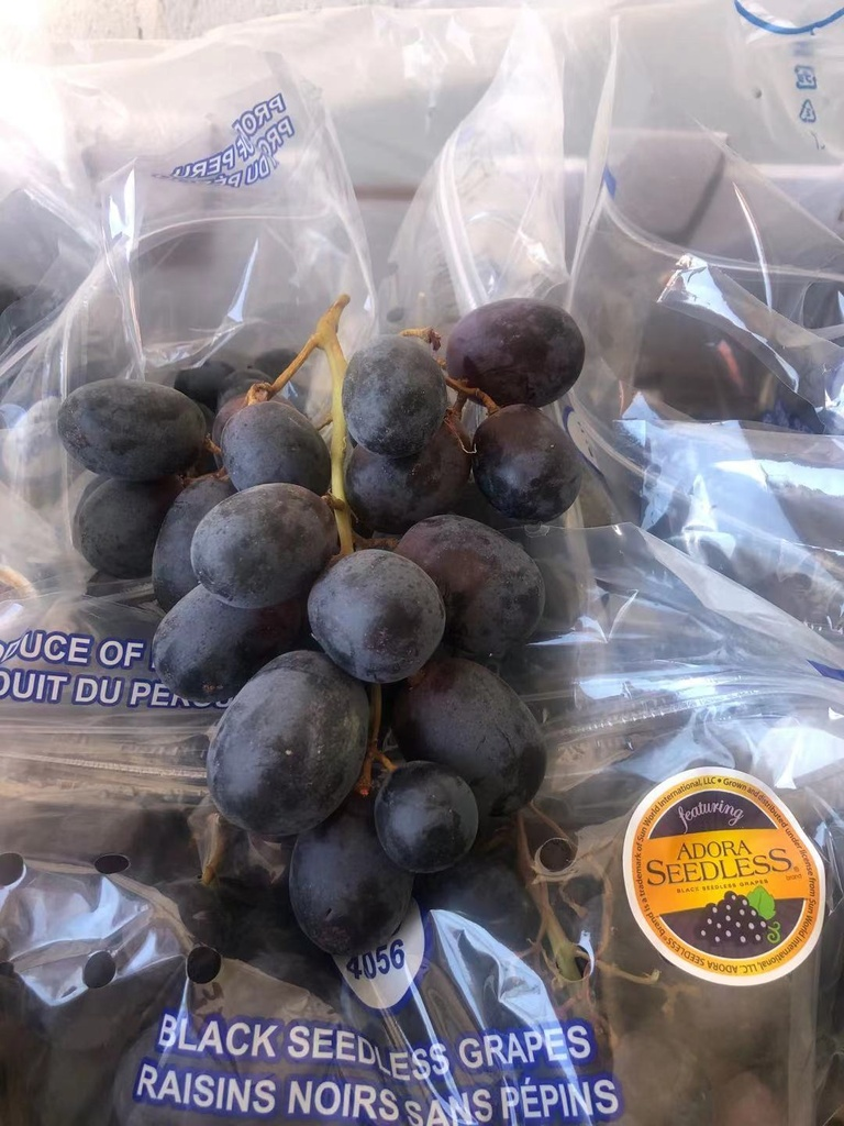 Fresh XL Black Seedless Grapes   16lbs/Cases