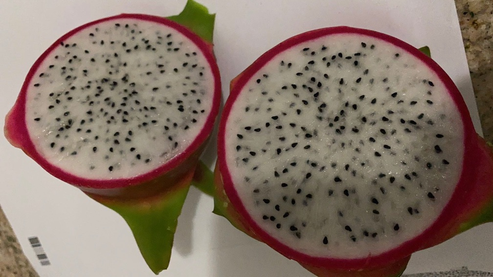 Dragon Fruit/ White (5lb/bag)
